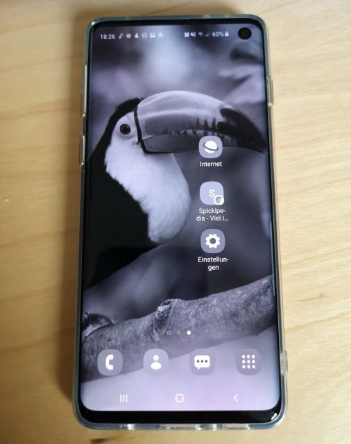 Samsung Galaxy S10 Display grau